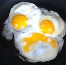 eggREADY